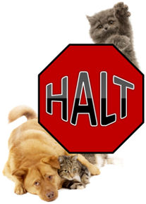 HALT (Help Animals Lives Today)